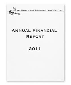 FinancialCover2011