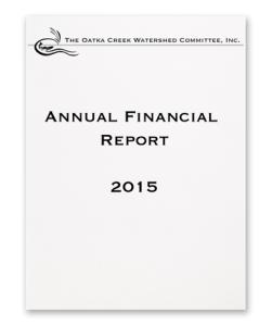 FinancialCover2015