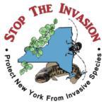 Stop Invasion